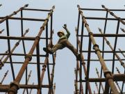 China-India in lock-step: No sacrificing growth for inflation