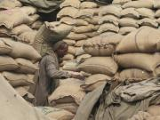 Food security ordinance: Why UPA's 'good intentions' are ruinous