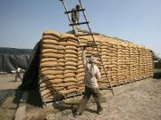 Lakhpati loaders no more: FCI to deploy contract workers to trim wage bill