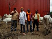 If Maharashtra can't enforce beef ban lawfully, it should lift it, not outsource it