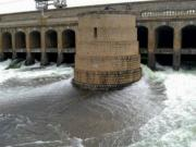 Cauvery dispute: SC directs Karnataka to release 6,000 cusecs of water to Tamil Nadu for 3 days