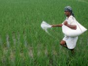 Gujarat Assembly Election 2017: Politics over farm loan waivers will only harm agriculture in the state