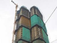 Tatas launch Rs 2,000 cr rental housing project