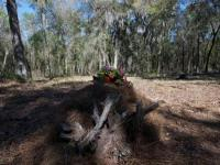 Eco-friendly green burials catching on in the U.S