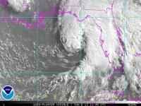 Tropical Storm Andrea bears down on Florida's Gulf Coast
