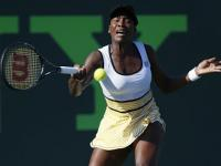 Venus beats Scheepers to advance into Charleston third round