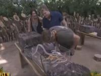 What a Ripper! Watch Shane Warne being bitten by an anaconda on reality show