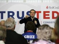 'Only candidate who can beat Donald Trump is me': Ted Cruz goes on offensive against billionaire frontrunner