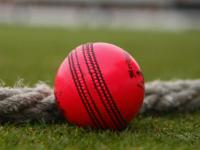 Day-night Test cricket is essential for the survival of format: New Zealand Cricket chief