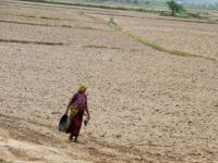 As drought grips India, Opposition plans to raise issue in Parliament