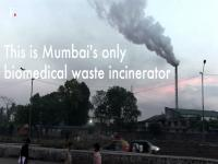 Watch: Where all of Mumbai's medical waste goes