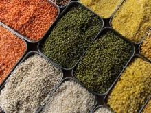 Pulses prices drop sharply: Why govt needs to revamp the flawed agriculture policy