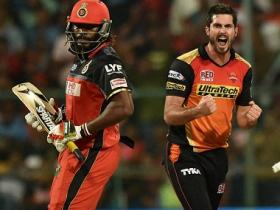 Sunrisers Hyderabad teach RCB expensive lesson: Virat Kohli-AB de Villiers alone can't guarantee a win