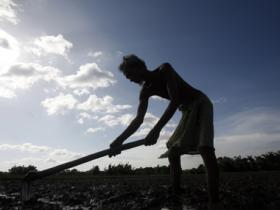 Low formal credit reach to keep most farmers off loan waivers, says report
