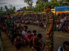 Myanmar security forces killed hundreds during systematic campaign to expel Rohingyas, claims Amnesty