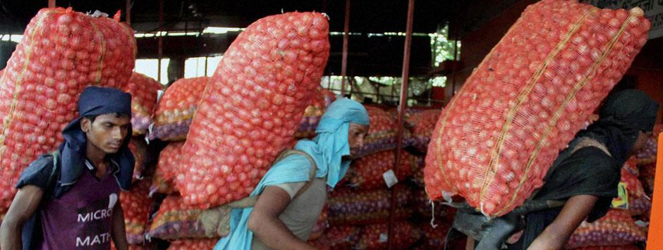 Onion price fall: Are tussles in Maharashtra BJP, Centre and procedural lapses to blame?