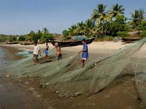 Fish famine in Goa. AFP