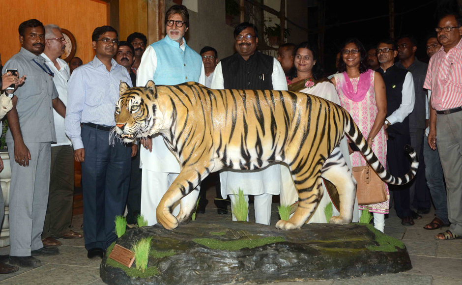 Bollywood megastar Amitabh Bachchan accepted the proposal of Maharashtra Forest Minister Sudhir Mungantiwar, to be the tiger ambassador of the state. He is seen with the minister in front of a tiger figurine. Firstpost
