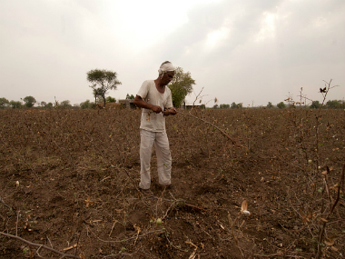 A farmer clearing the crop destroyed by the hailstorm at Borsar Village Taluka Vijapur in Marathwada. Representational image. Getty Images.