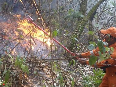 NDRF officials working to extinguish the wildfire in Uttarakhand. Image courtesy: NDRF