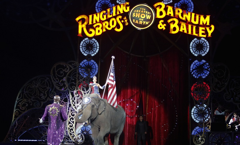 An Asian elephant performs during the national anthem for the final elephant performance during the Ringling Bros and Barnum & Bailey Circus on Sunday. AP
