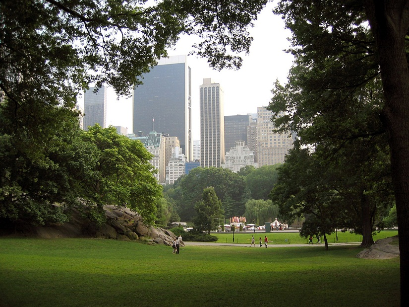 Central Park. Photo courtesy Petr Broza/Freeimages
