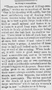 The report in The Bamberg Herald 21 January 1904 describes a British hunter using a puppy as bait.