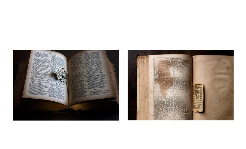 A copy of Richard III with a dried flower in it (left panel) Image Courtesy: Chirodeep Chaudhari