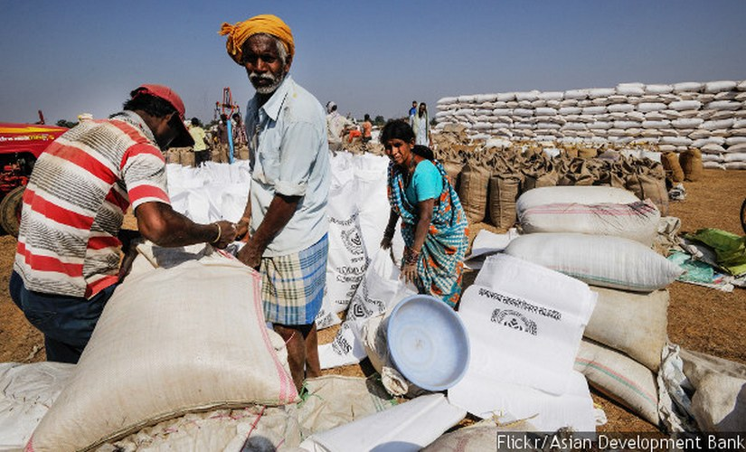 An elderly farmer delivering grain at a paddy procurement centre near Raipur, Chhattisgarh. Over a third of India's elderly people–38%–continue to work, according to the National Sample Survey Office.