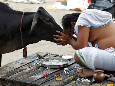 Cow slaughter. Representational Image. Reuters