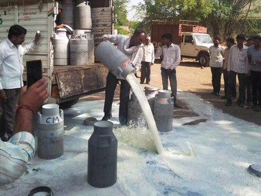 Farmers spilling milk on a road during their state-wide protest. PTI