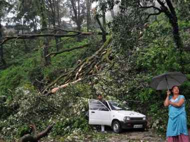 A woman stands near a car which was damaged by a tree that fell after heavy rains and strong winds in Shimla (representational image). Reuters