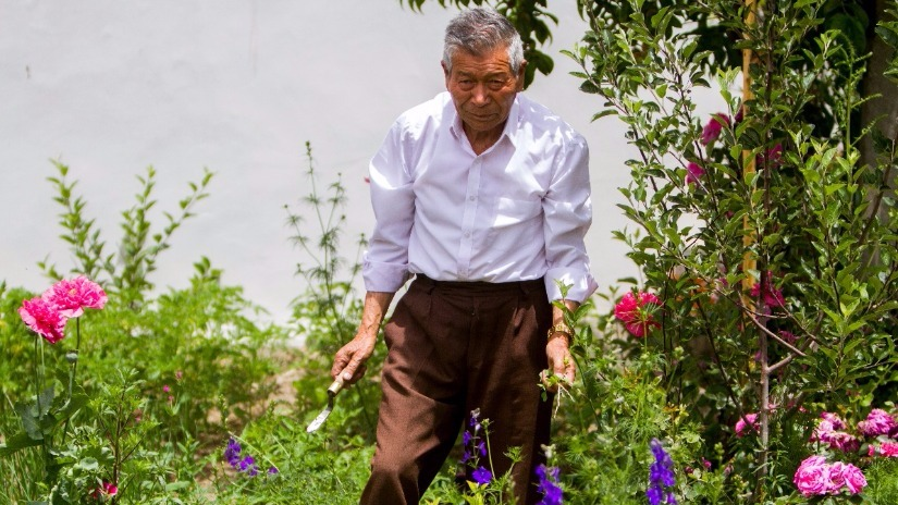 Nophel at home, working in his kitchen garden. Photo: Javeed Shah