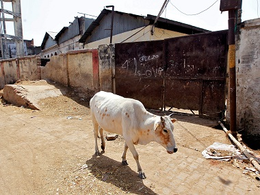 A cow walks past a closed slaughterhouse in Allahabad, India March 28, 2017. REUTERS/Jitendra Prakash - RTX330KU