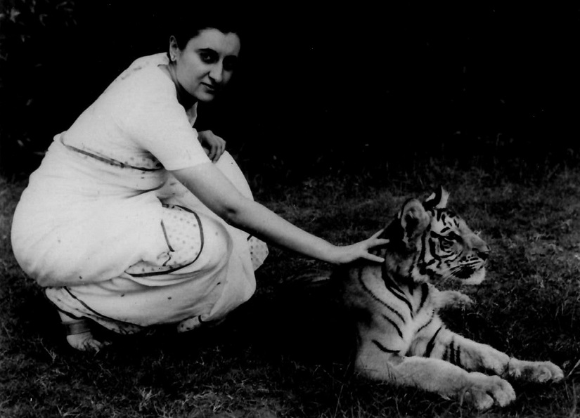Mrs. Gandhi with a tiger.