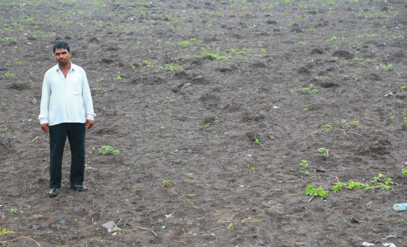 Sudarshan Gotekar, 40, stands in the middle of his toor farm in Hivardi, Jalna. Image courtesy: Bhakti Tambe