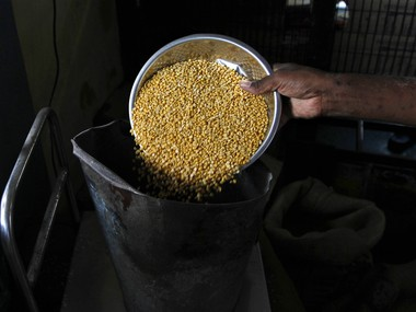A man who runs a government subsidized food shop weighs lentil inside his shop in the southern Indian city of Chennai July 9, 2013. The National Food Security Ordinance aims to give five kg (11 lb) of cheap grain every month to 800 million people and more than doubles the reach of the existing subsidized food system, whose failings still mean the country is home to a quarter of the world's hungry. Picture taken July 9, 2013. To match story INDIA-FOOD/ REUTERS/Babu (INDIA - Tags: FOOD POLITICS BUSINESS) - GM1E97J12UD01
