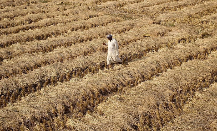 Maharashtra: Fadnavis asks banks to start depositing farm loan waiver benefits