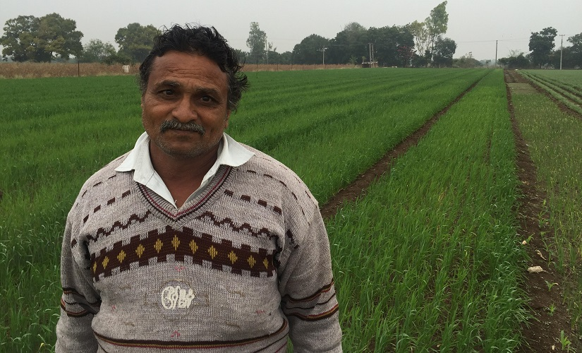 Ramesh Gondalia, a farmer lost 120 quintals of cotton after Cyclone Ockhi brought unseasonal rains to Amreli. Parth MN/Firstpost