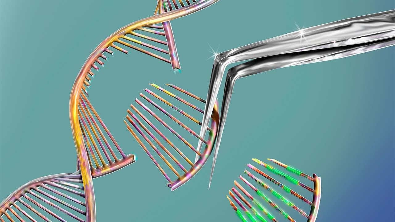 Gene editing as a technology still has a long way to go before being embraced in human trials. Image: Getty