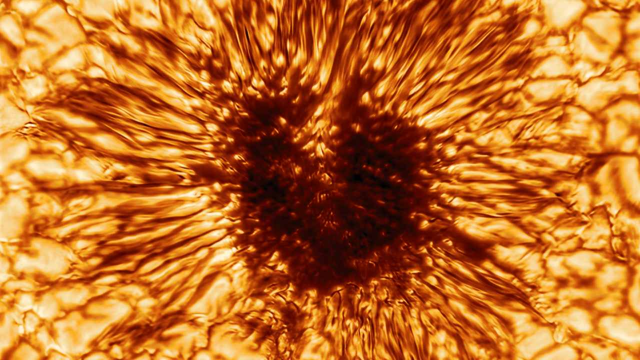 This is the first sunspot image taken on January 28, 2020 by the NSF's Inouye Solar Telescope's Wave Front Correction context viewer. The image reveals striking details of the sunspot's structure as seen at the Sun's surface. Image credit:NSO/AURA/NSF
